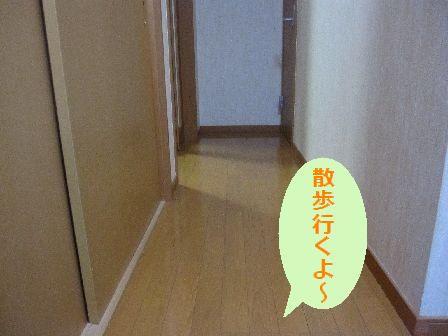 Img_7308_2
